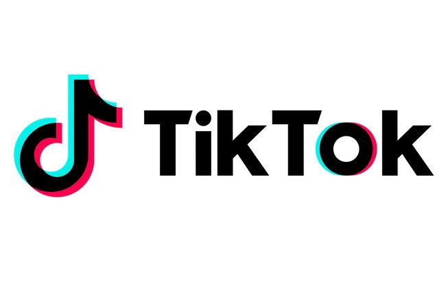 Image result for tik tok logo transparent